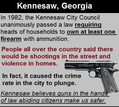 The 2nd Amendment The Facts Political Discussion Forums